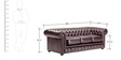 Classic Three Seater Chesterfield Sofa in Brown Colour by Afydecor