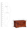 Lincoln Trunk Box in Honey Oak Finish by Amberville