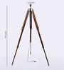 Ethnic Roots Sheesham Wood Tripod Lamp Base