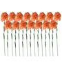 Fourwalls Orange Synthetic Artificial Carnation Stem - Set of 15