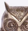 Bleachers Owl Showpiece in Brown by Bohemiana
