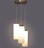 LeArc Designer Lighting Antique Gold Mild Steel LED Pendant