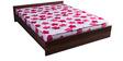 Free Offer - New Super Delux 5 Inch Single Coir & Foam Mattress by Kurl-On