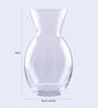 Pasabahce Transparent Glass Botanica Vase