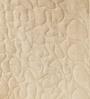 Reme Multicolour Cotton King Size Digital Print Quilt