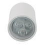 Cocovey 1112008-Stw LED Outdoor Light