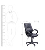 Spine Medium Back Executive Chair in Black Colour by Stellar