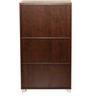Chikako Storage Cabinet in Walnut Finish by Mintwud