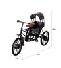 Tadcaster Cycle Taxi Showpiece in Brown & Black by Amberville